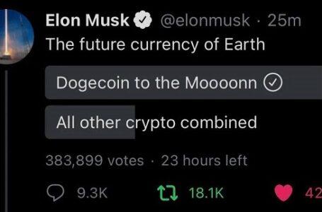 Elon Musk'tan, 'geleceğin para birimi' anketi,