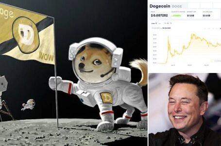 """SpaceX,yılın ilk çeyreğinde """"DOGE-1 Ay Görevini"""" başlatacak ödeme olarak dogecoin'i kabul etti"""