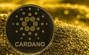 Cardano üzerinde 200 akıllı sözleşme başlatıldı,