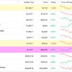 Bitcoin Artık Dünyanın En Değerli 8. Varlığı